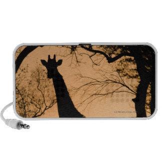 Giraffe (Giraffa camelopardalis) silhouette Travel Speaker