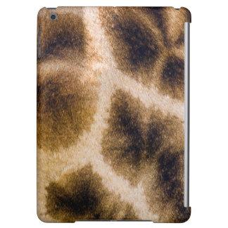 Giraffe (Giraffa Camelopardalis) Skin