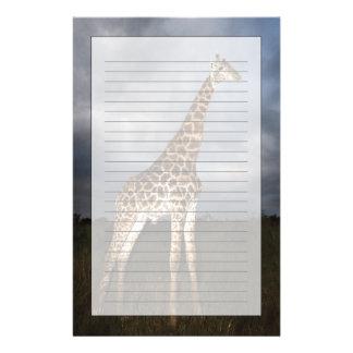 Giraffe (Giraffa camelopardalis) Stationery