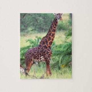 Giraffe, Giraffa camelopardalis, Tanzania Africa 2 Jigsaw Puzzle