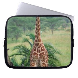 Giraffe, Giraffa camelopardalis, Tanzania Africa Laptop Sleeve