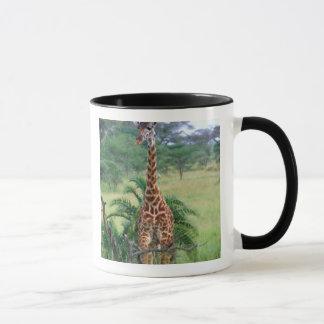 Giraffe, Giraffa camelopardalis, Tanzania Africa Mug