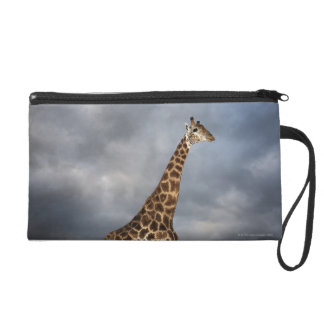 Giraffe (Giraffa camelopardalis) Wristlet Clutches