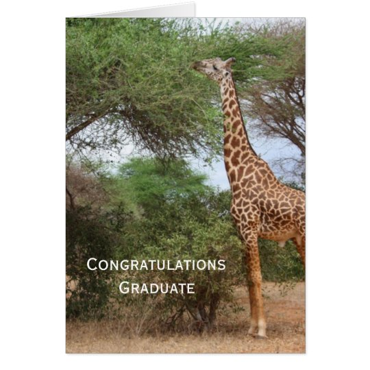Giraffe Graduation Card