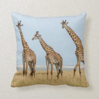 Giraffe Herd in Grassland Cushion