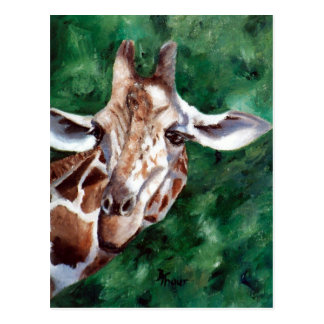 Giraffe I'm Up Here Postcard