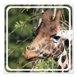 Giraffe Images Invitation