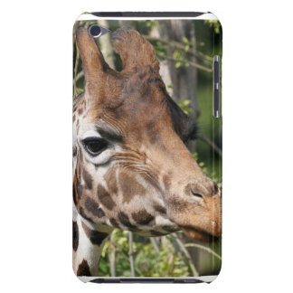 Giraffe Images  iTouch Case iPod Touch Cases
