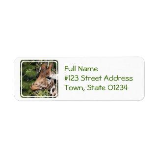 Giraffe Images Mailing Label Return Address Label
