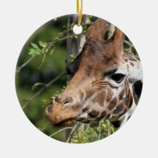 Giraffe Images Ornament