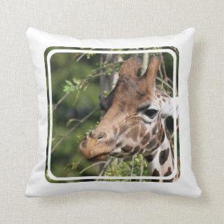 Giraffe Images  Pillow