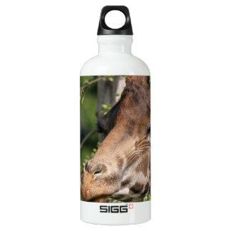 Giraffe Images  SIGG Traveller 0.6L Water Bottle