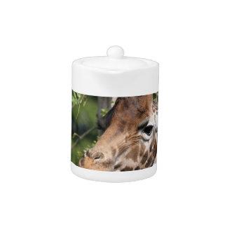 Giraffe Images  Teapot