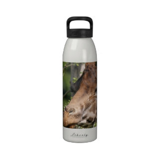 Giraffe Images  Water Bottle