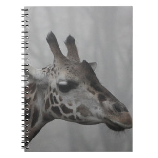 Giraffe in the Fog Notebooks