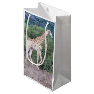Giraffe in the Wild Small Gift Bag