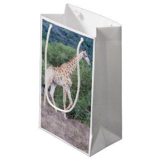 Giraffe in the Wild Small Gift Bag