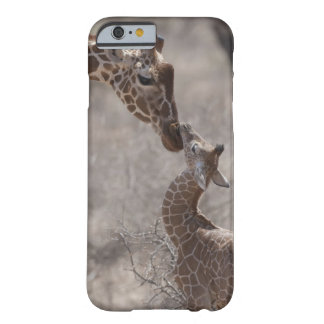 Giraffe, Kenya, Africa Barely There iPhone 6 Case