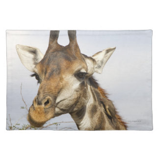Giraffe, Kruger National Park, South Africa Placemat