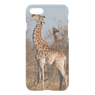 Giraffe Morning Snack iPhone 7 Case