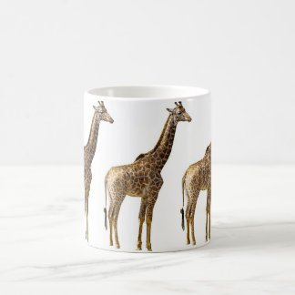 giraffe tazas de café
