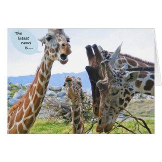 Giraffe News Card