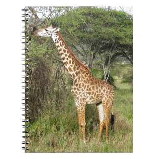 giraffe notebooks