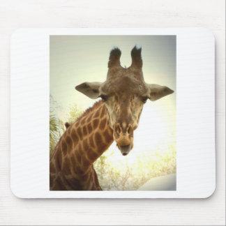 Giraffe orig -zaz mouse pad