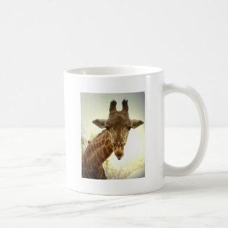Giraffe orig -zaz mug