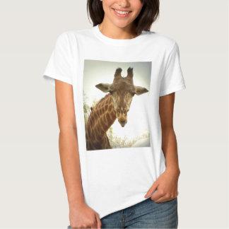 Giraffe orig -zaz shirts