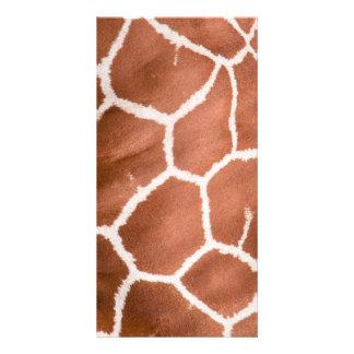 Giraffe pattern photo greeting card
