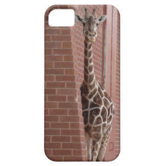 Giraffe Peek-a-boo iPhone 5/5S Case