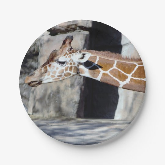 Giraffe Photo 7 Inch Paper Plate