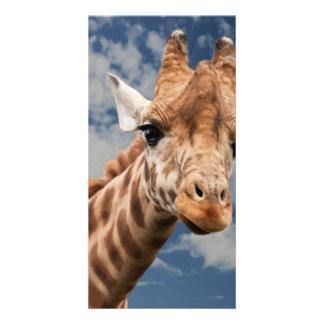 Giraffe Custom Photo Card