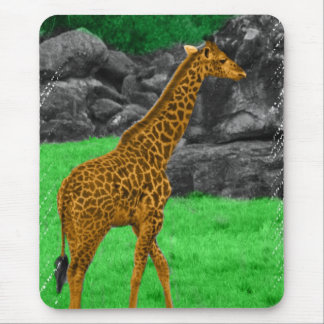 Giraffe photo colorized orange and green mouse pad