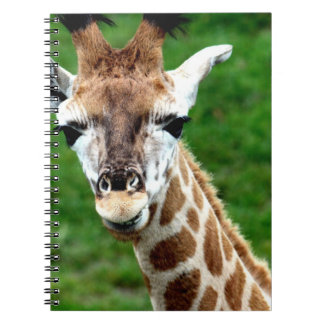 Giraffe Photo Notebook