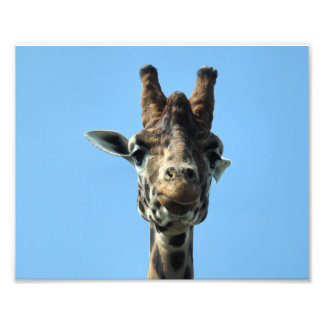 GIRAFFE PHOTO PRINT