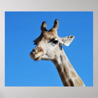 Giraffe photography profile posters
