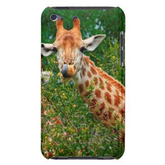 Giraffe Portrait, Kruger National Park iPod Touch Case-Mate Case