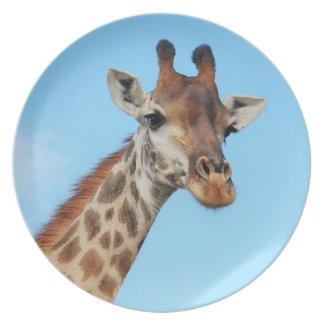 Giraffe portrait party plate