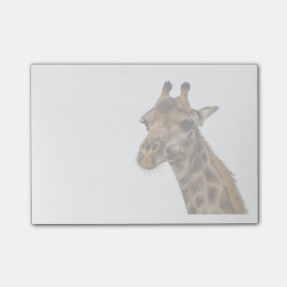 Giraffe Post It Notes