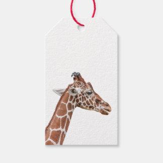 Giraffe profile gift tags