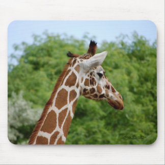 Giraffe profile. mouse pad