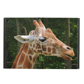 Giraffe Right Face iPad Air Cases