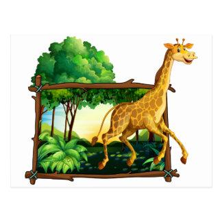 Giraffe running in the forest postcard
