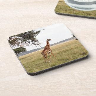 Giraffe Serengeti NP Beverage Coaster