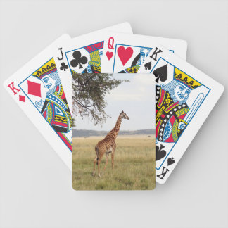 Giraffe Serengeti NP Bicycle Card Deck