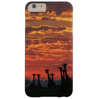 Giraffe Silhouette - Fire Sky Barely There iPhone 6 Plus Case