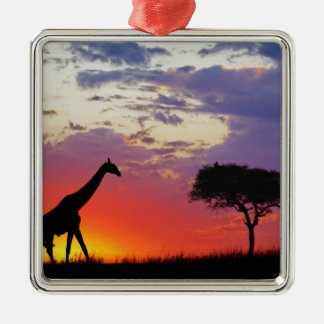 Giraffe silhouetted at sunrise, Giraffa Christmas Ornament