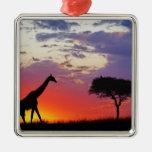 Giraffe silhouetted at sunrise, Giraffa Christmas Tree Ornaments